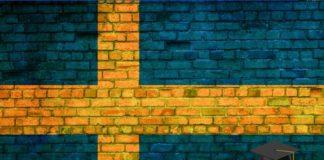 erasmus-suecia programa educativo
