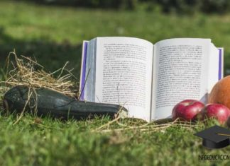 libros sobre alimentacion saludable